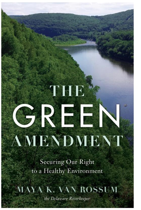 The green amendment book cover
