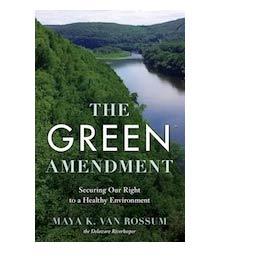 green amendment thumb